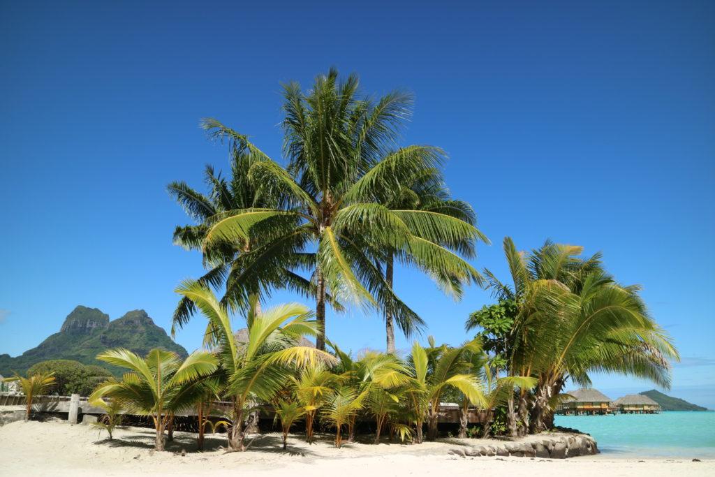 タヒチボラボラ島パールビーチリゾートスパの風景