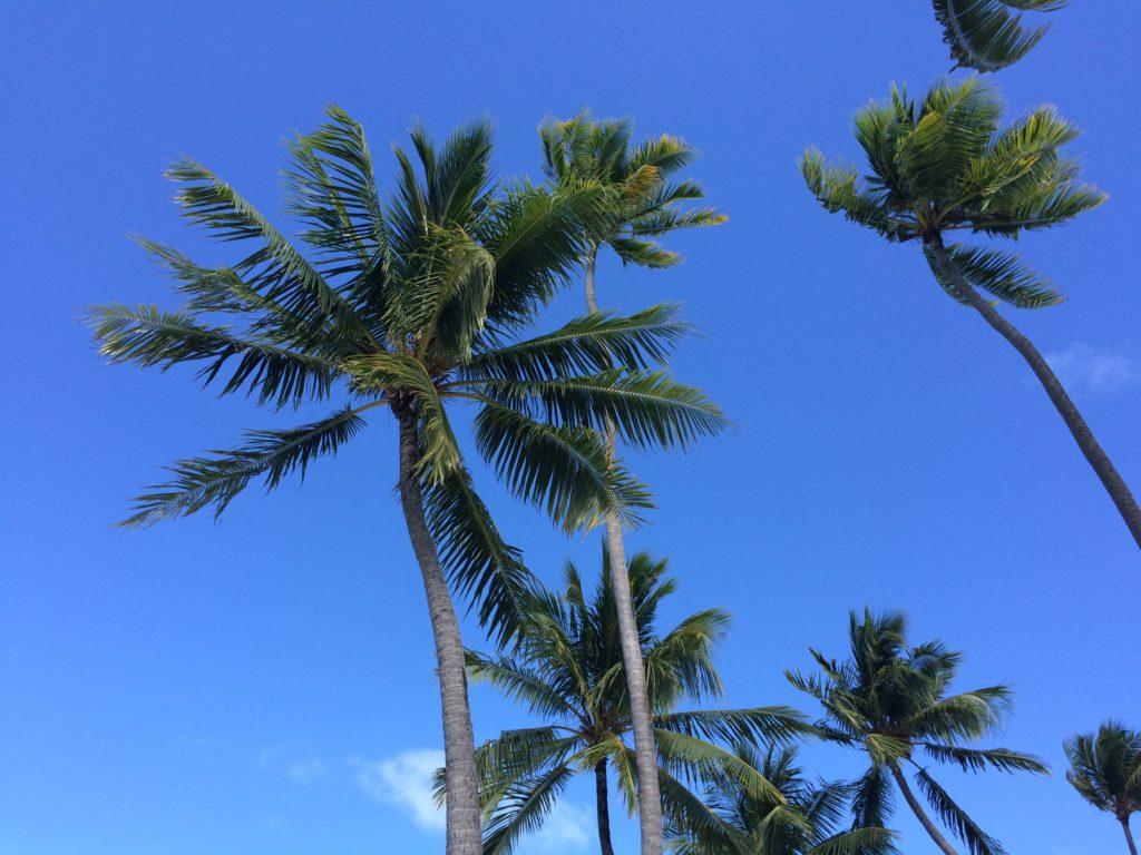 タヒチボラボラ島の風景
