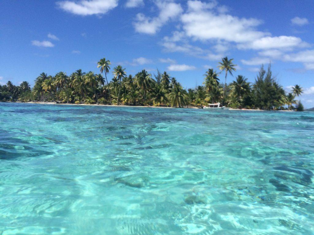 タヒチボラボラ島の海に潜ったときの光景