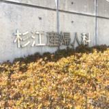 杉江産婦人科の看板