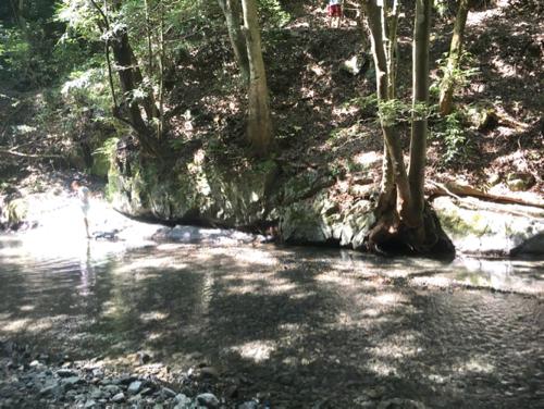 滝畑湖畔バーベキュー場の川