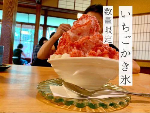 かき氷で有名な奈良富雄「みやけ」のいちごかき氷