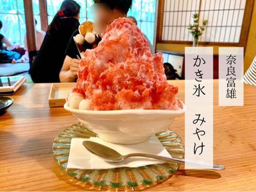 奈良県富雄かき氷「みやけ」