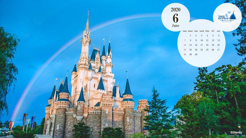 ディズニー入場制限2020|チケットの販売日や抽選倍率は?年パスの対応も!
