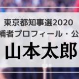 山本太郎のプロフィール・公約・経歴をチェック!東京都知事選2020候補者