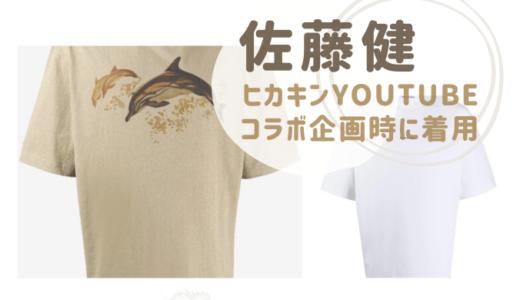佐藤健イルカTシャツのブランドや値段は?ヒカキンコラボYouTubeで着用